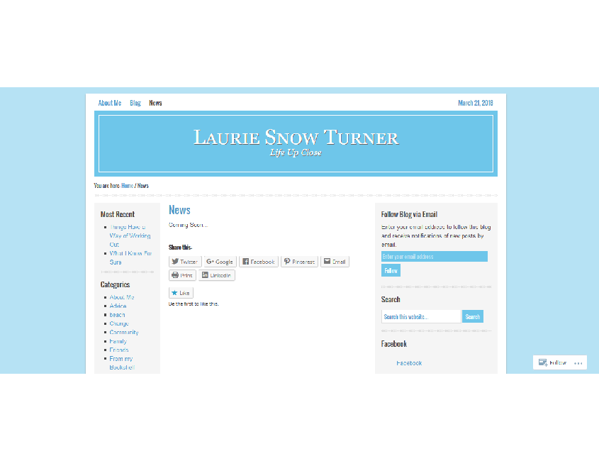 Lauriesnowturner_3